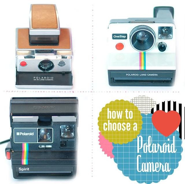 How to Choose a Polaroid Camera