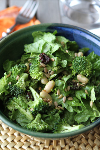 Salad-with-Broccoli-Dried-Cherry-White-Beans-Sunflower-Seeds-&-Creamy-Basil-Dressing-Recipe-Cookin-Canuck