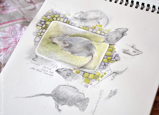 Mouses-1