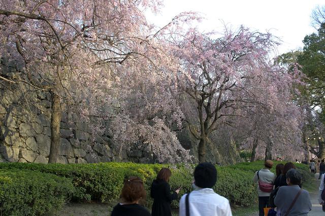 2012-kyushu-269