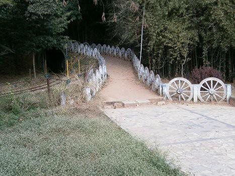 CubbonParkBangalore06