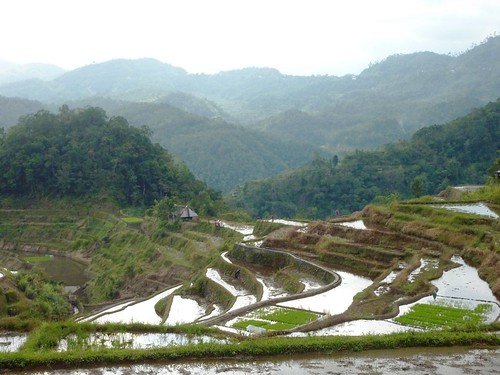 Luzon-Banaue-Batad (10)