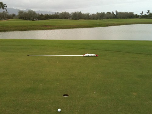 Hawaii Prince Golf Club 424