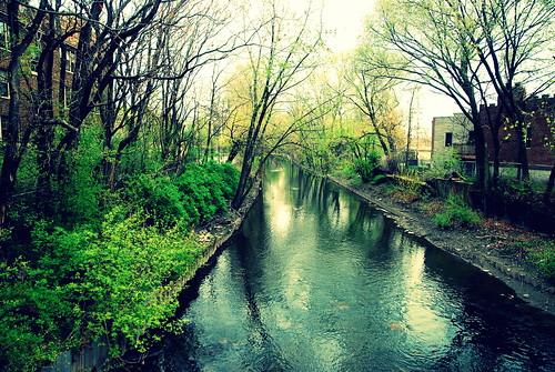 040112 albany park-007