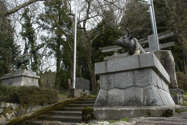 ROOTS! 自分探しの旅 熊野神社
