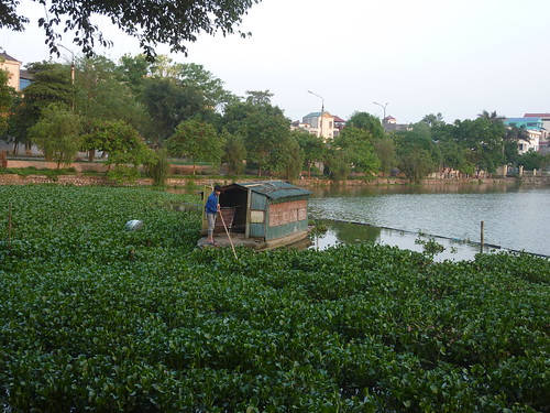 V-Lang Son-Lac Ho Phai Loan (10)