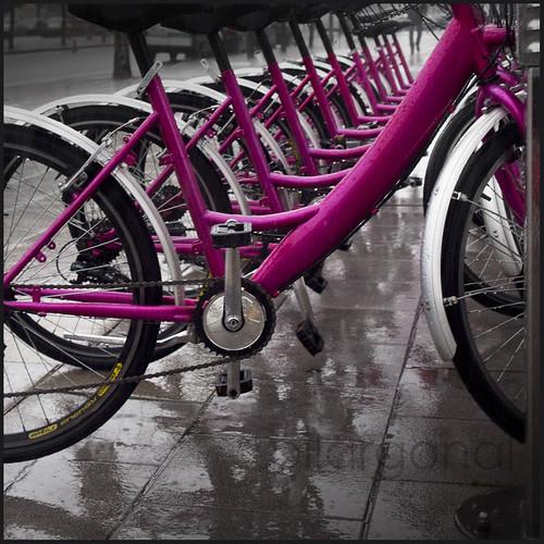 Las bicicletas son para el verano by pilargonal