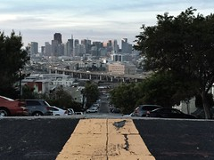 096/365 Potrero View