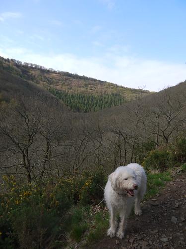 All Uphill