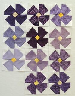 5 inch violet blocks