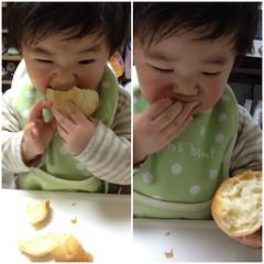 実家で今朝焼いたパンを食べるとらちゃん(2012/2/25)