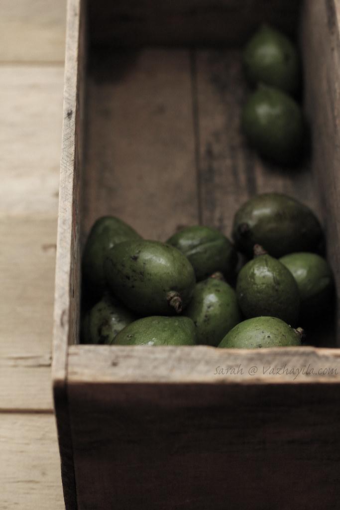 Tender mango pic