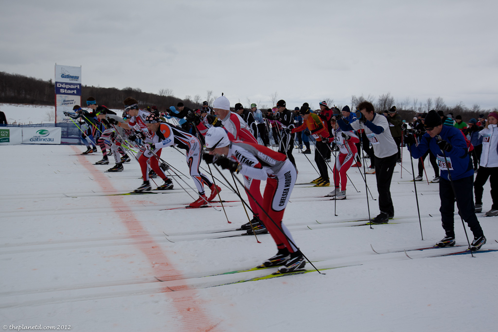cross country skiers at start line of race