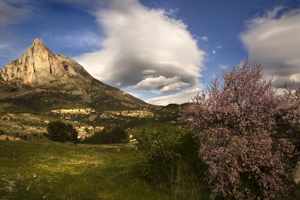 Billedresultat for spanien natur