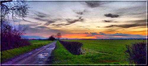 Sunset P1030452