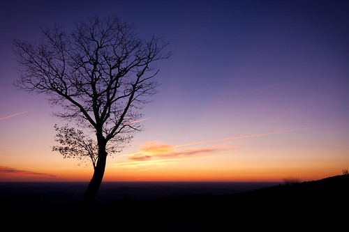 park morning sky mountain tree colors silhouette sunrise dawn virginia shenandoah skylinedrive
