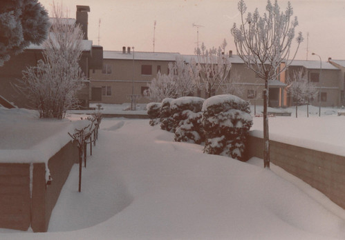 Nevicata 1985 by meteomike