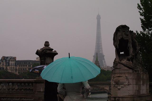 Rain... Umbrellas...