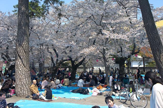 2012-kyushu-227
