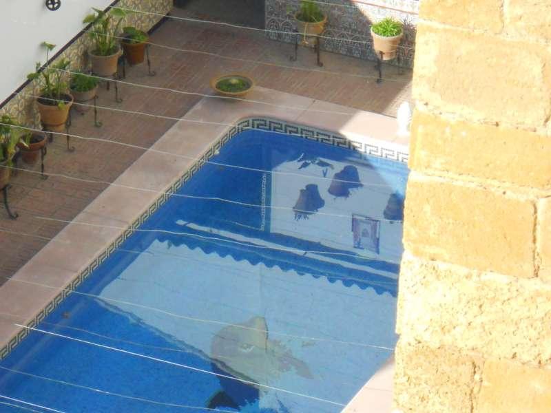 Jardineros en acci n piscinas peque as para jardines for Piscinas en patios chicos