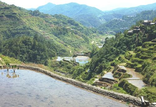 Luzon-Banaue (33)
