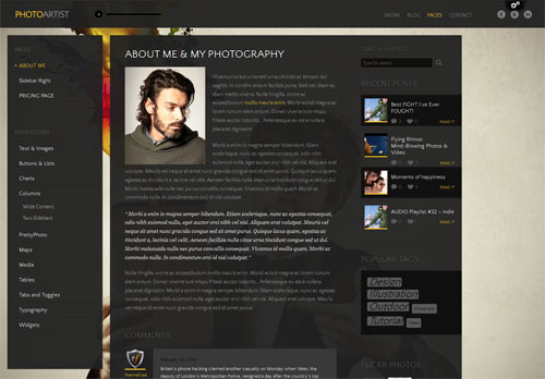 photoartist-theme-3