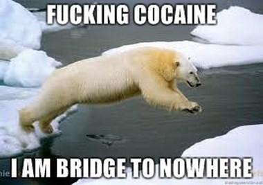 bridgecokebear2