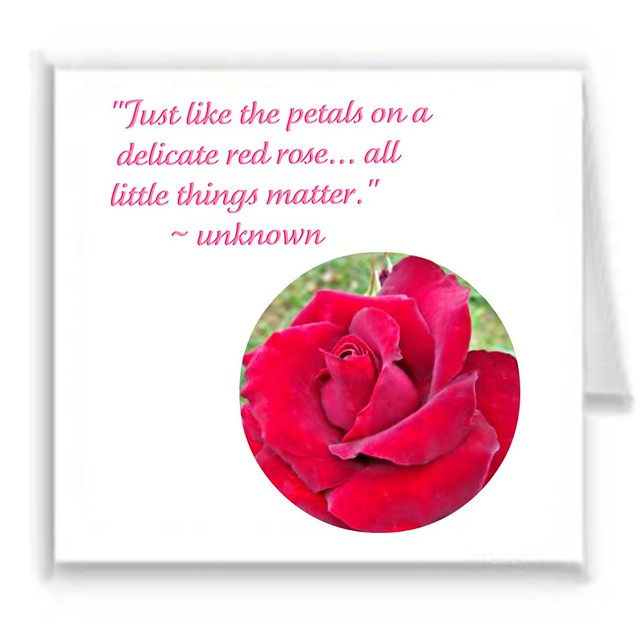 """Just like the petals on a delicate red rose... all little things matter."""