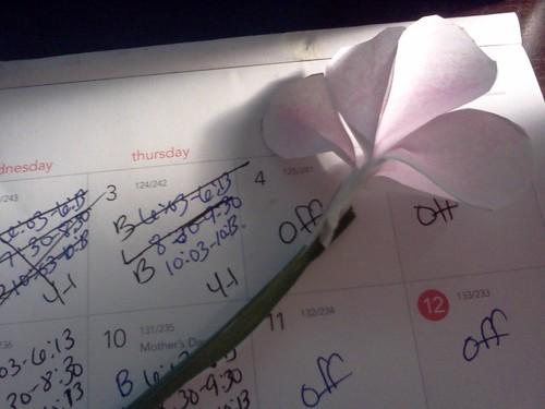 Flower Bre made me 2012