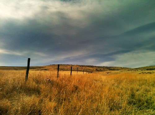 High Valley Fence Line