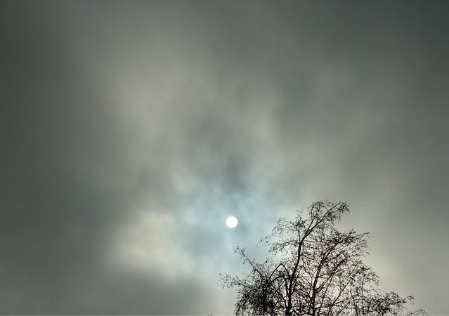 Spot of Sun
