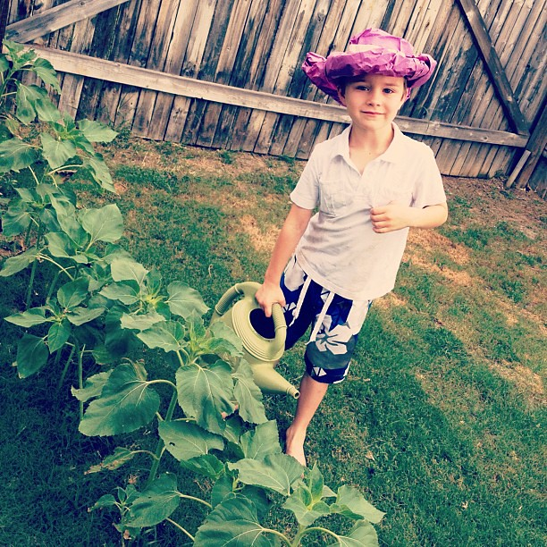 my little urban gardener
