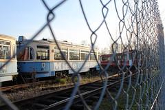 Alte Münchner Straßenbahn (Typ M 4.65) [ausgemustert] | old munich city tram