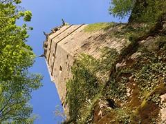 Au pied de la Tour #parc #parcbuffon #montbard #cotedor #cotedortourisme #tower