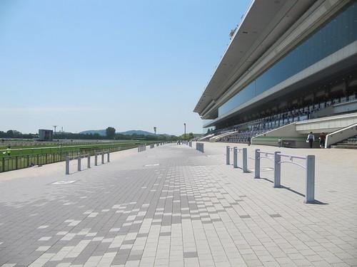 京都競馬場のスタンド前