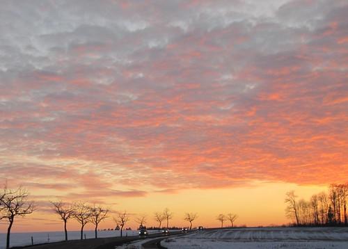 alberi strada tramonto nuvole cielo neve rosso fuoco