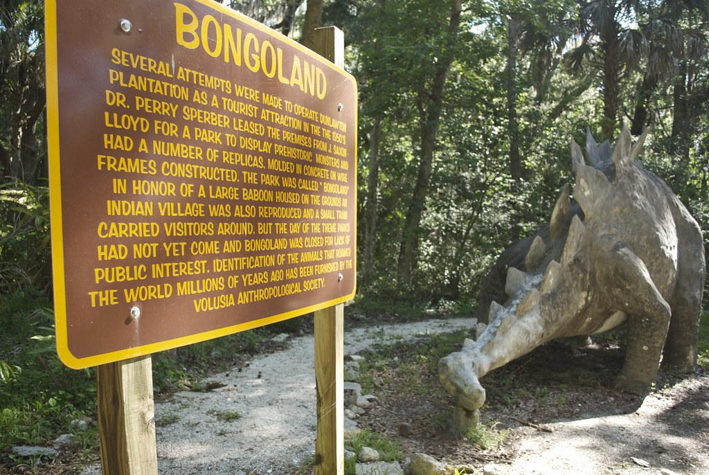 Bongoland history