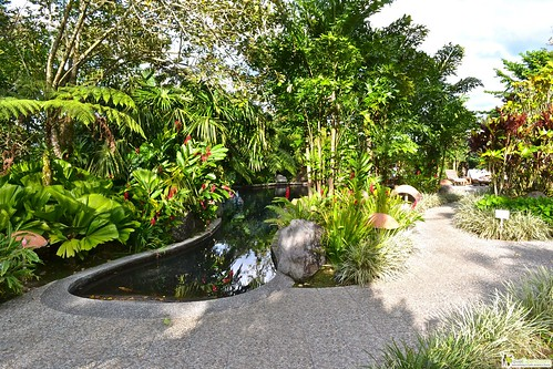 natural hot springs budget hotel la fortuna arenal costa rica
