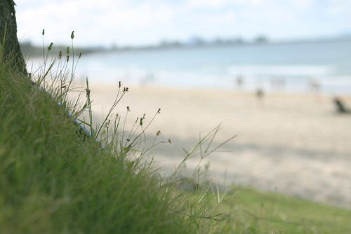 Laying in the grass at the beach