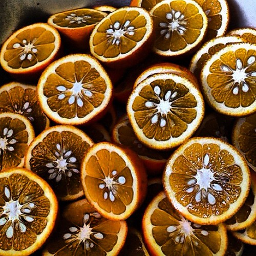 近所から貰ったんで橙酢作りの手伝い中