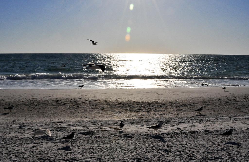 sunset-playa