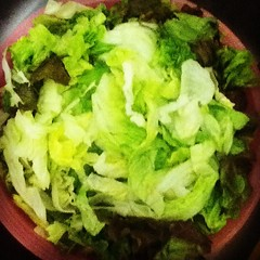 salad, lettuce, vegetable, leaf vegetable, food, dish, cuisine,