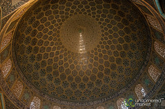 Peacock on Sheikh Lotf Allah Dome - Esfahan, Iran