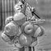 Small photo of Balloon man
