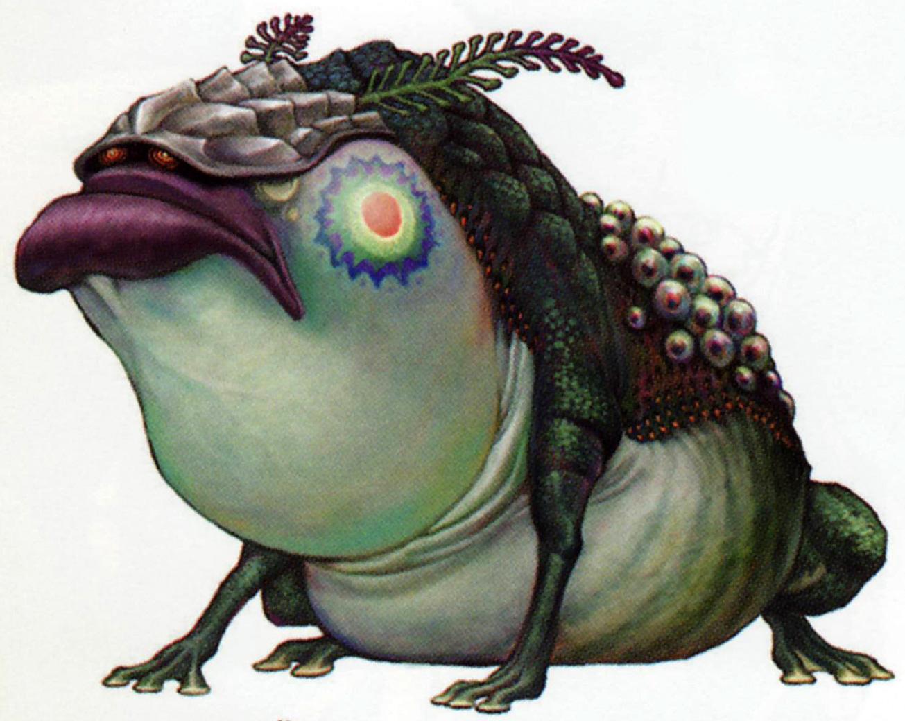 TP Deku Toad