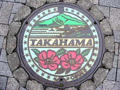 Takahama Fukui manhole cover (福井県高浜町のマンホール)
