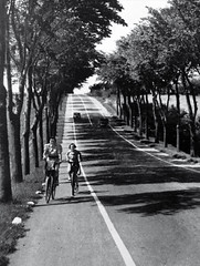 Bike Lanes on Country Roads 1930s