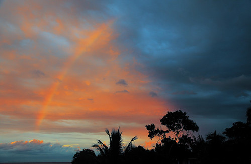 sunset tree rainbow landscapejamaica