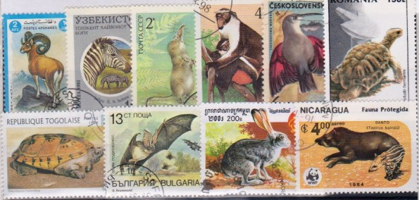 Známky - 25 rôznych, zvieratá