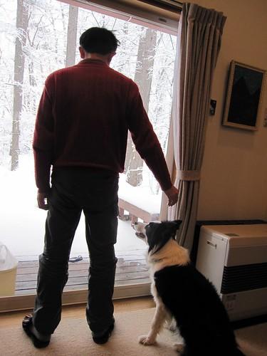 雪景色、仲良く二人で見ます・・・ by Poran111